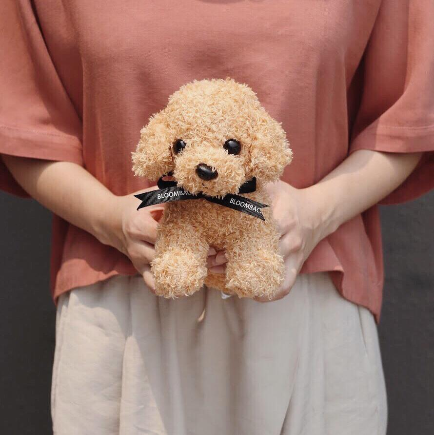 A woman in reddish-brown top and cream pants holding dog plushie