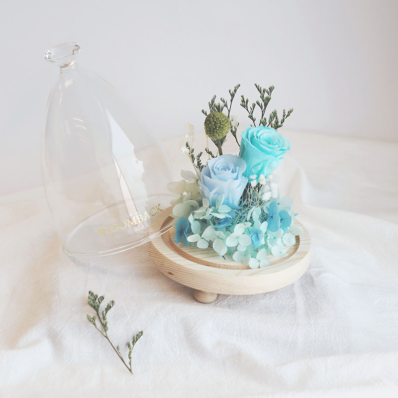 2 blue roses in opened glass dome with diamond-shaped top