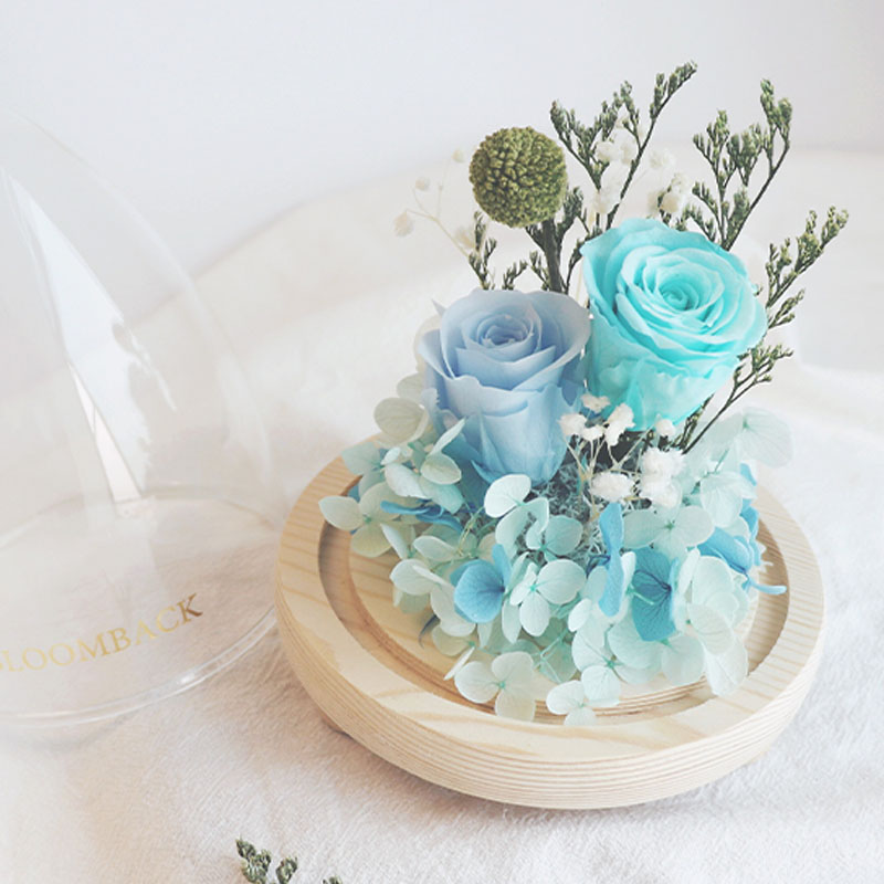 Close up of 2 blue roses encased in glass dome with diamond-shaped top