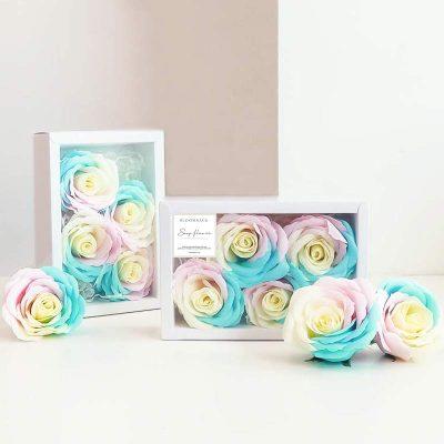 Rainbow Soap Set of Four