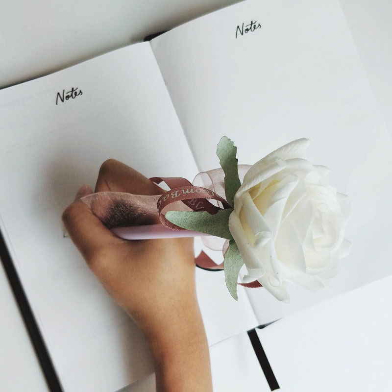 Pen with white rose