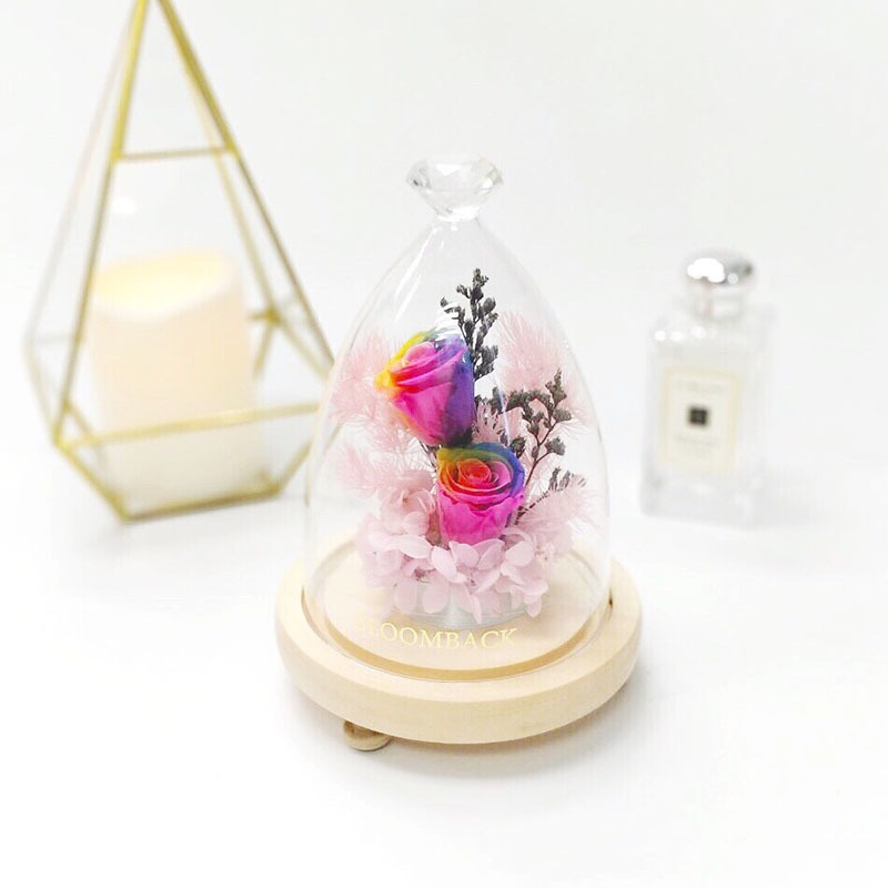 A diamond glass dome featuring 2 rainbow preserved rose, light pink preserved hydrangeas and preserved foliages.