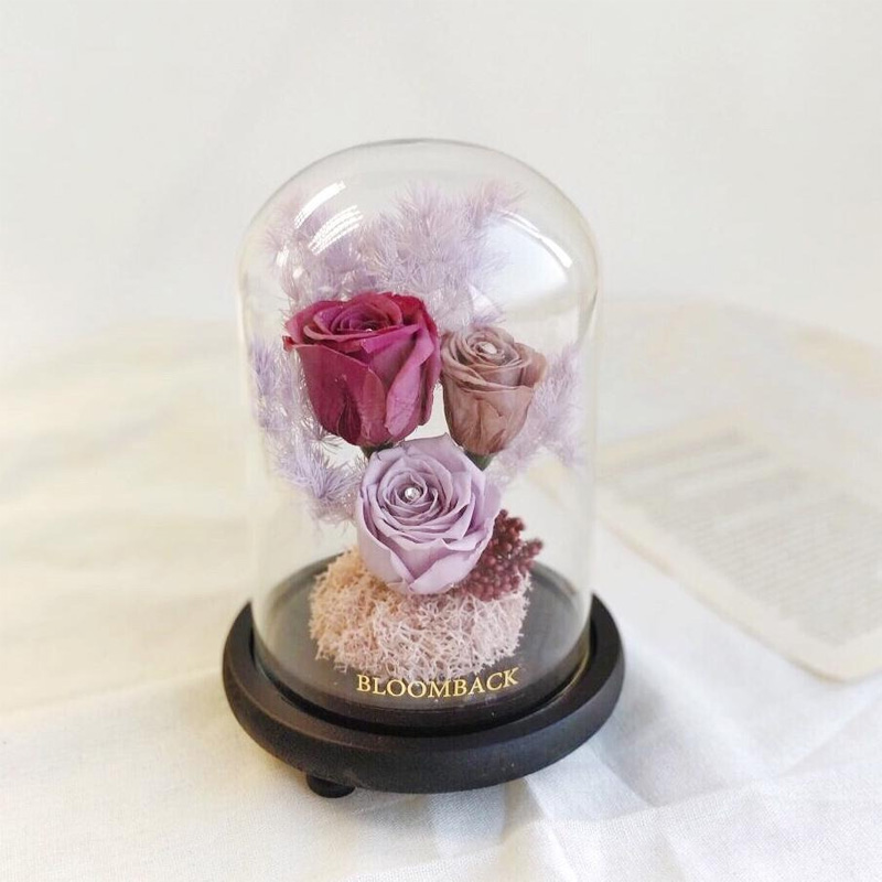 Preserved roses and foliage in a glass dome with black base