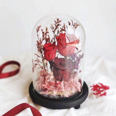 3 preserved rose roses encased in glass dome