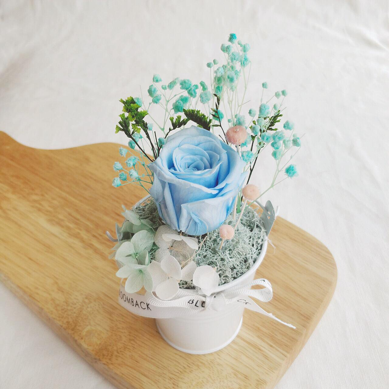 A small white bucket featuring 1 blue preserved rose, preserved foliages, preserved hydrangeas and BloomBack ribbon.