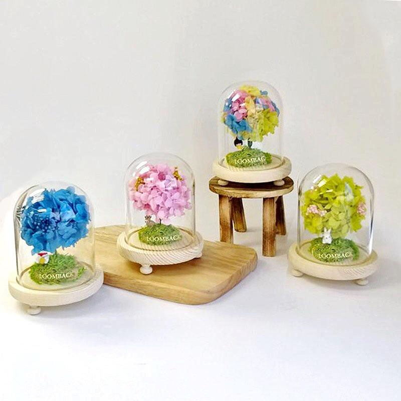 4 small glass domes featuring a lookalike tree made of hydrangeas in different colours, blue, pink, green and rainbow.