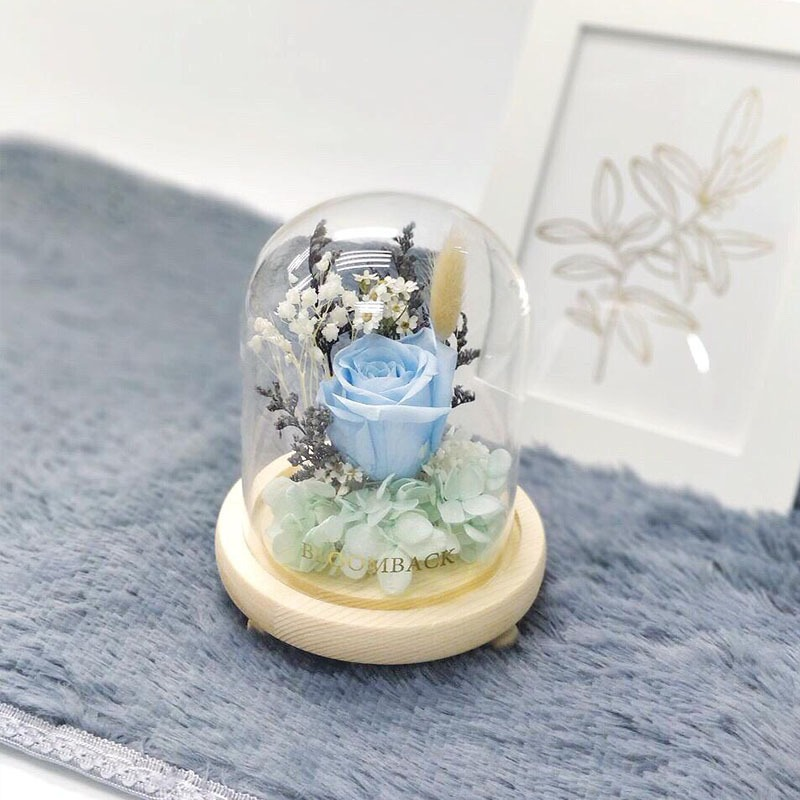 A small glass dome featuring 1 sky blue preserved rose, teal preserved hydrangeas and preserved foliages.