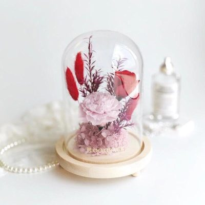 A medium glass dome featuring 1 pink carnation, 1 red preserved rose, pink preserved hydrangeas, pink preserved moss and preserved foliages.