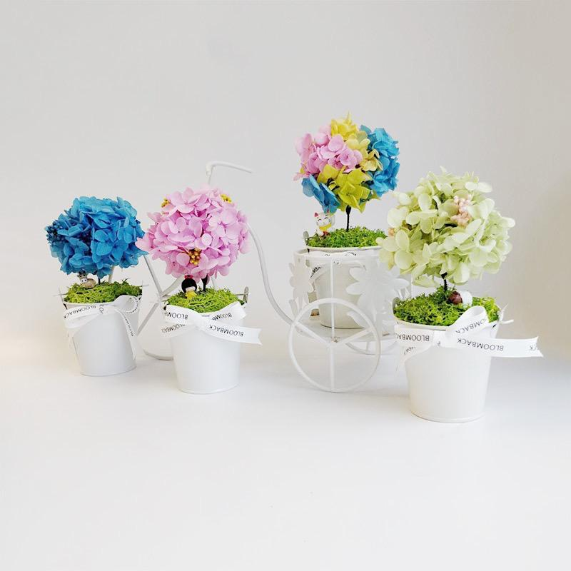 A small white bucket featuring a lookalike tree made of blue , pink, rainbow and green preserved hydrangeas.