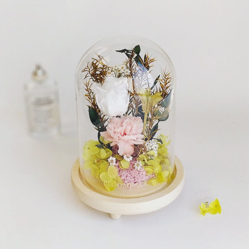A medium glass dome featuring 1 white preserved rose, 1 ice pink preserved carnations, green preserved hydrangeas, pink preserved moss and preserved foliages.