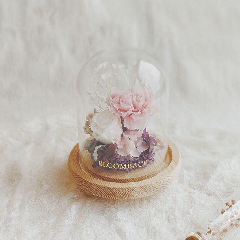 A small glass dome featuring 1 white preserved rose, 1 pink preserved carnation, preserved hydrangeas, purple preserved moss, white preserved baby's breath and preserved foliages.