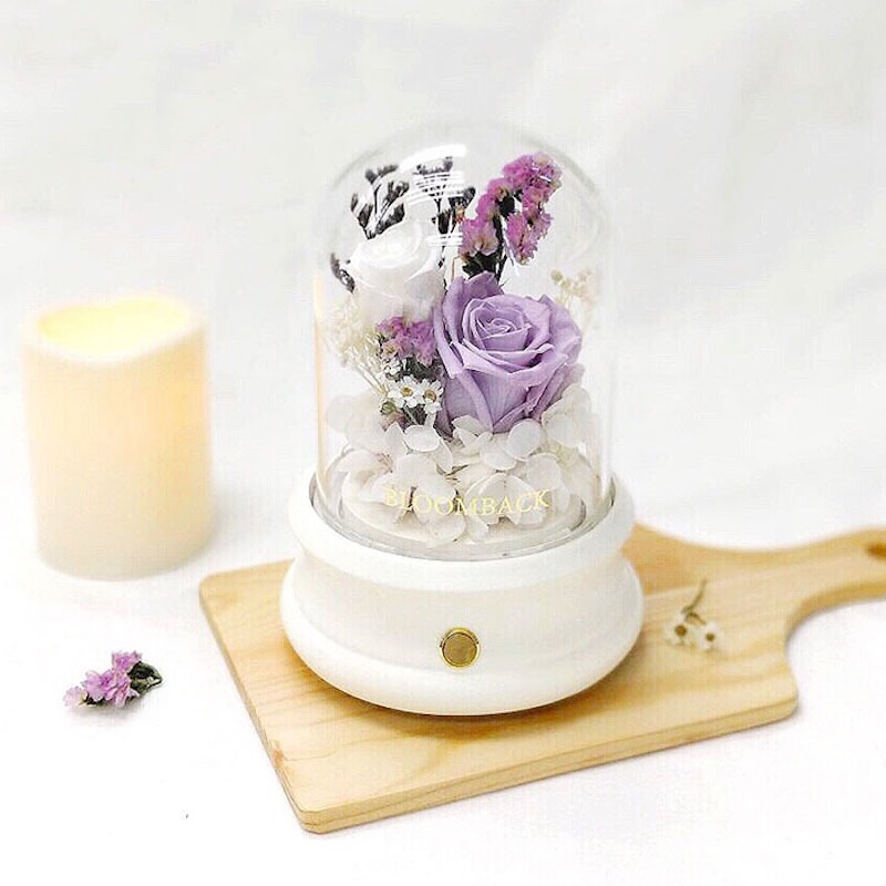 A white Bluetooth Dome featuring 1 lavender preserved rose, 1 white preserved rose, white preserved hydrangeas, preserved foliages and LED light.