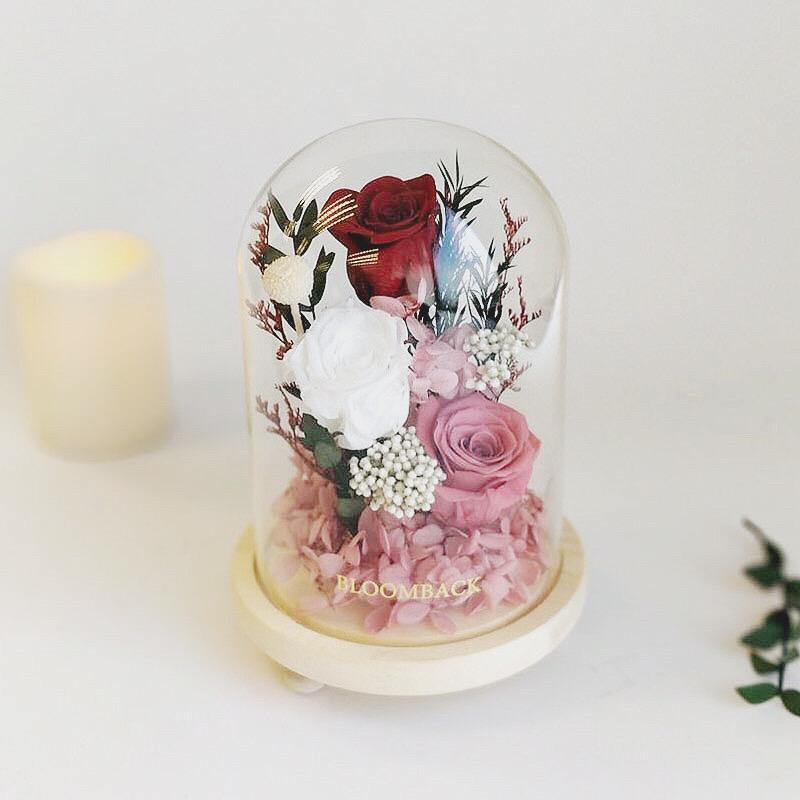 A medium glass dome featuring 1 red preserved rose, 1 white preserved rose, 1 deep pink preserved rose, pink preserved hydrangeas and preserved foliages.