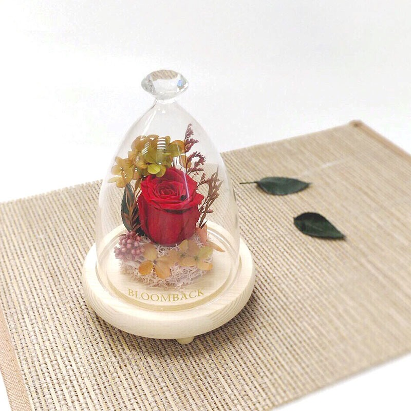 A diamond glass dome featuring 1 red preserved rose, light pink moss and preserved foliages.