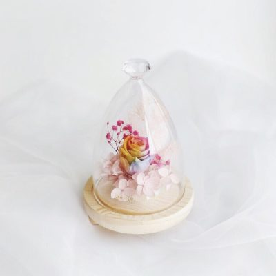 Rainbow preserved rose encased in glass dome with diamond-shaped top