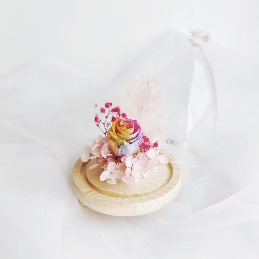 Rainbow preserved rose encased in opened glass dome with diamond-shaped top