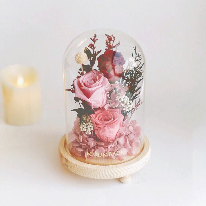 3 preserved roses of different shades of red and pink encased in glass dome