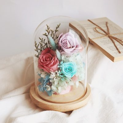 3 preserved roses of different colours, light purple, antique red and tiffany blue in glass dome