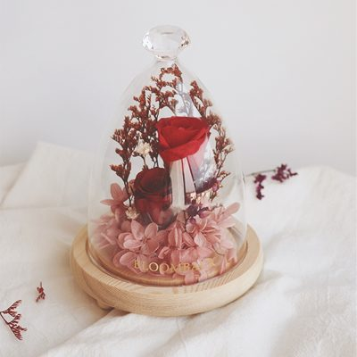 1 red preserved rose enclosed in glass dome