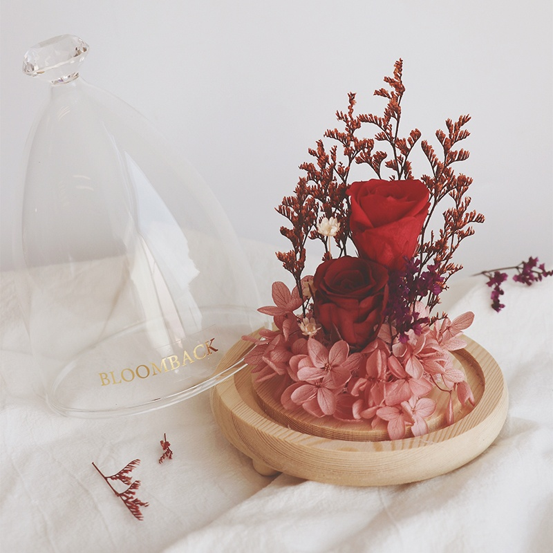 1 red preserved rose in opened glass dome