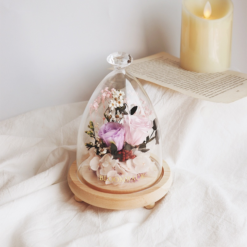 2 preserved roses, purple and pink enclosed in glass dome