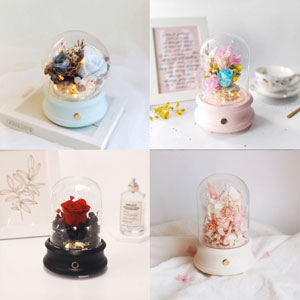 Product Description Collage Bluetooth Speaker Dome Variety