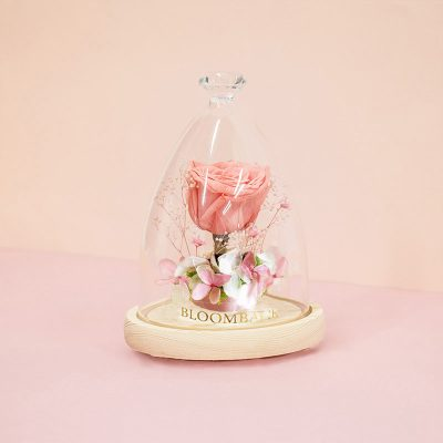 Iove Blossoms V3