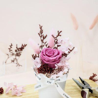 Bucket Plant My Own Garden (pink)
