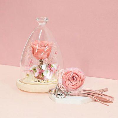 Apr Gift Set