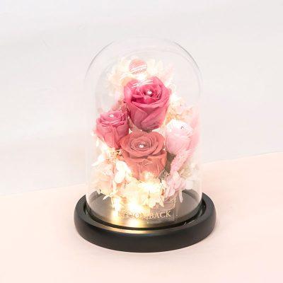 Lom Pink
