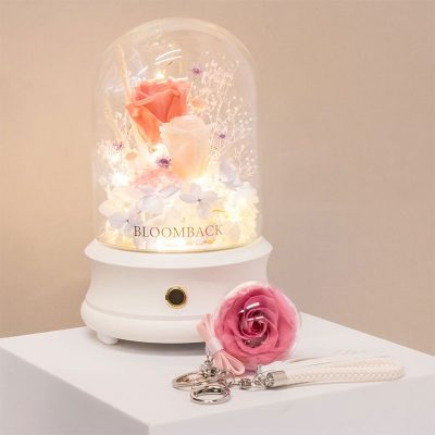 (7) Clarachan X Bb Gift Set A
