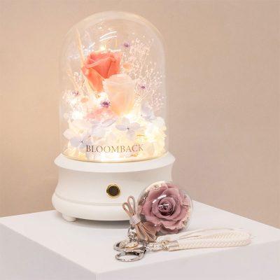 (8) Clarachan X Bb Gift Set B
