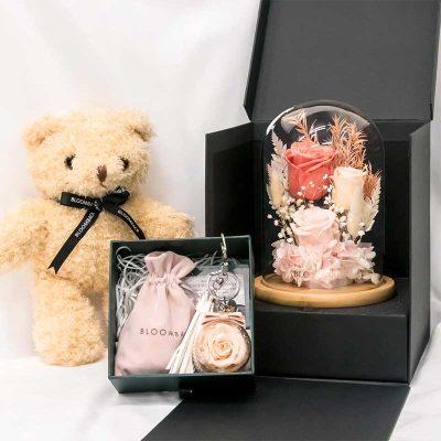 Premium Gift Set Isw V2