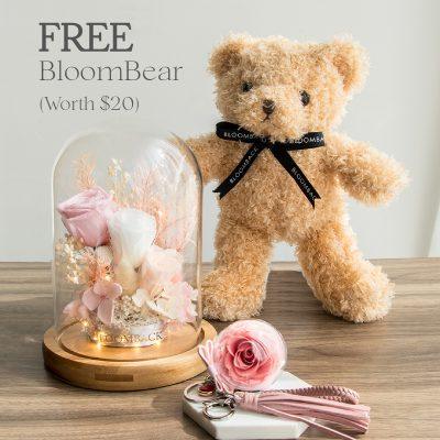 Free Bear Loml