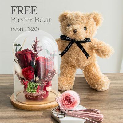 Free Bear Ril