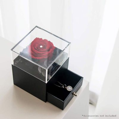 With All My Heart Jewellery Box Red (open Box)new
