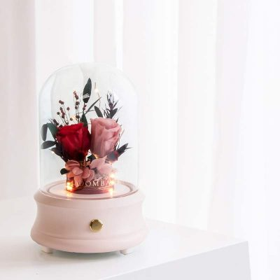 Take Heart LED Bluetooth Speaker
