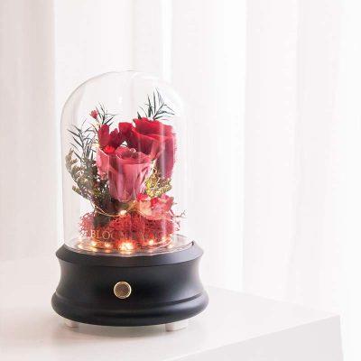 Perfect Love LED Bluetooth Speaker