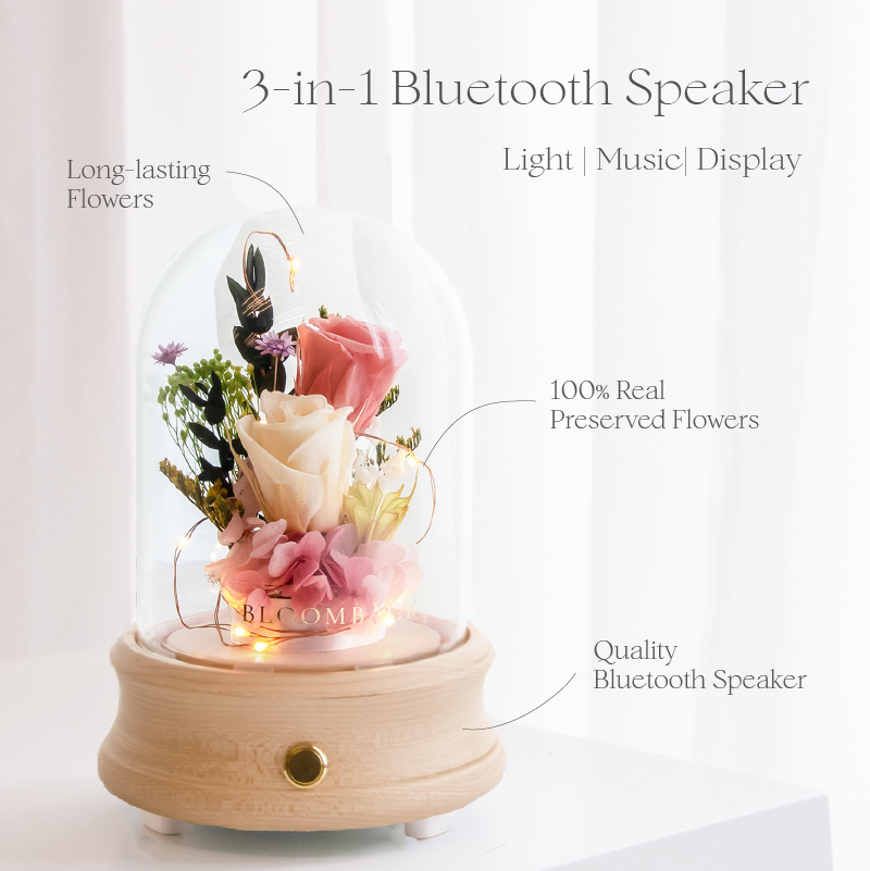 Bluetooth Speaker Features