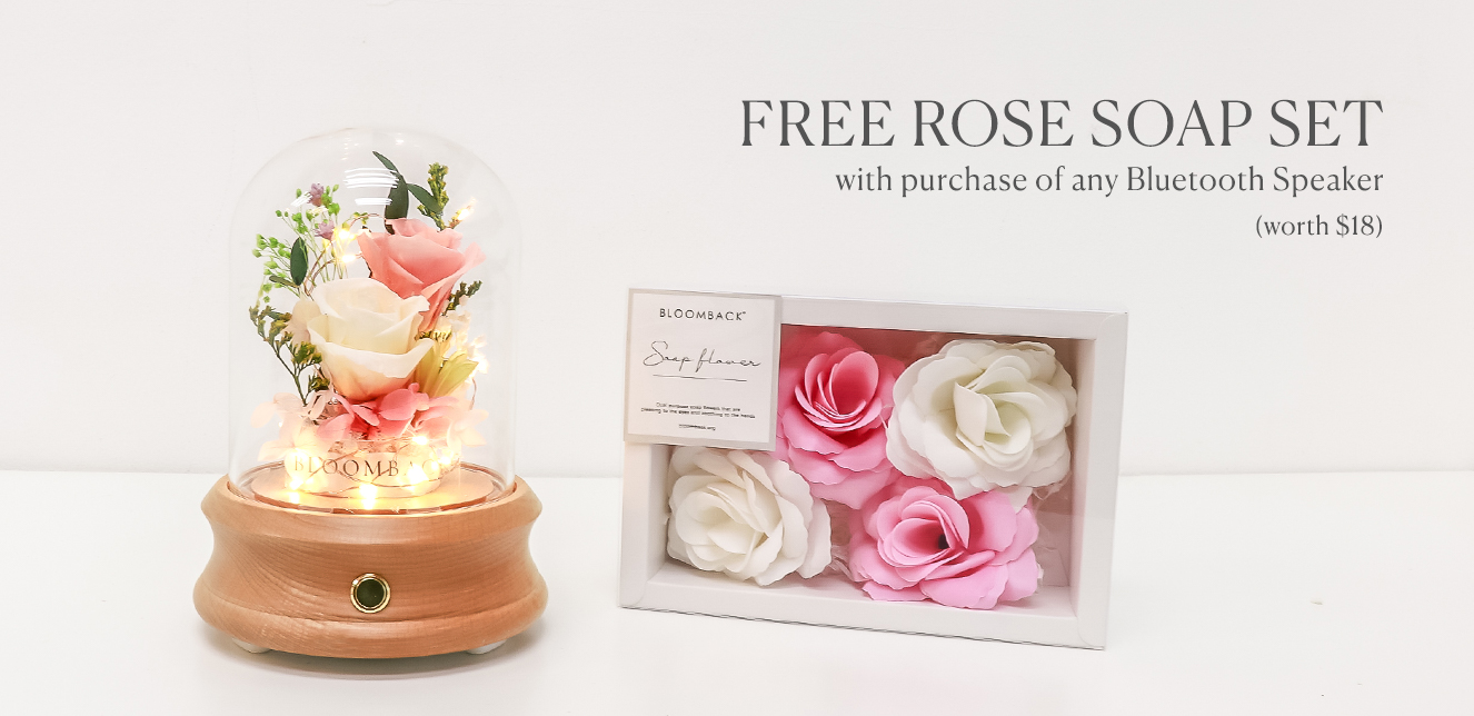 Bluetooth Speaker Domes + Rose Soap Product Banner